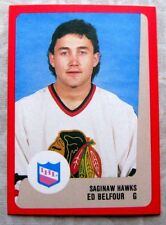 1988-89 ED BELFOUR IHL PROCARDS 88-89 RC CARD**PRE-NHL ROOKIE CARD**