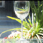 """LOUISE by Kosta Boda Goblet 9"""" tall Made in Sweden NEW IN BOX NEVER USED"""