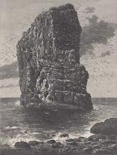 ENGLAND MARSDEN ROCK SEA BIRDS OCEAN BIRD ANTIQUE ENGRAVING ART PRINT 1898