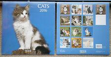 Cats 2016 Wandkalender mit Ferienterminen - Katzen - ovp - Korsch Verlag