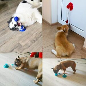 Dog Interactive Suction Cup Push TPR Ball Toys Pet Molar Bite Toy Elastic Ropes