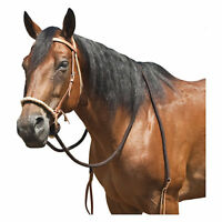 Mustang Harness Leather Breaking Hackamore