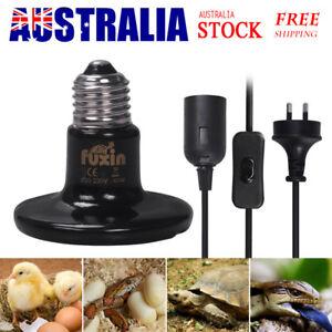 Infrared Ceramic Heat Emitter Light Lamp Bulb For Reptile Pet Chicken Incubator