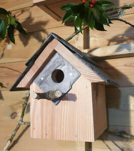 Bird House Nest box Welsh Slate hole protection plate sparrows great tits