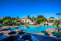 Sheraton Vistana Resort Disney Orlando 2 BEDROOM APRIL 6TH (7nights)