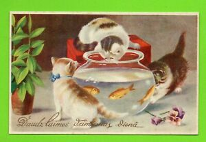 LATVIA LETTLAND CATS AND AQUARIUM WITH FISH VINTAGE POSTCARD 259