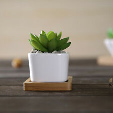 Mini Ceramic Succulent Planter Flower Pot White Porcelain Pot Plant Garden Decor