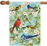 Toland Bird Collage 28 x 40 Colorful Cardinal Jay Flower Spring House Flag