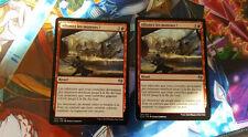 N°0075 - Magic - Allumez les moteurs ! - 135/264 - Kaladesh  lots de 2 cartes