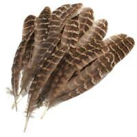 50/100 pcs DIY Craft Art Stylish Decor Beautiful Natural Pheasant Feathers E8C1