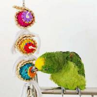 Swing Parrot Cage Ball Hanging Parakeet Pet Bird Bites Climb Chew Toys t