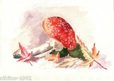 Still life Fly agaric and maple leaves Realism Water color Russian vintage USSR