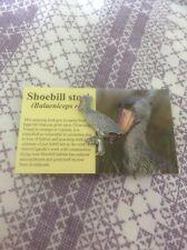 RSPB Pin Badge Shoebill Stork