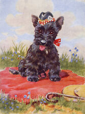 SCOTTISH TERRIER CHARMING SCOTTIE ON BLANKET WEARS HAT DOG GREETINGS NOTE CARD