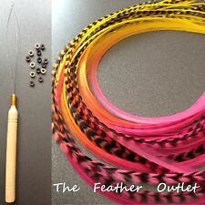 Feather Hair Extensions Kit Lot 10 Grizzly long Real Tie Dye Pink FLAME KIT