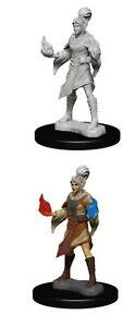 Pathfinder Unpainted Minis Wv1 Elf Female Sorcerer Miniatures NEW