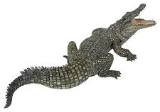 NILE CROCODILE Replica # 50055 ~ FREE SHIP/USA w/ $25.+ Papo Products