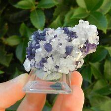 Minerali °°° CRISTALLI di QUARZO con FLUORITE Spagna (Code: MFQ237D)