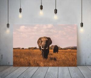 ELEPHANT 7 -DEEP FRAMED CANVAS ANIMAL WALL ART PICTURE PAPER PRINT- SAFARI GREY