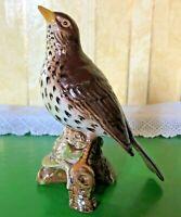 BESWICK BIRD THE SONGTHRUSH  GARDEN BIRD MODEL No. 2308 PERFECT