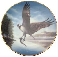 Royal Doulton Osprey John Mould Lords of the Sky CP73 Osprey Plate L Ed