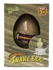Grow an Snake- Snake Egg Hatching Pet, Just Add Water
