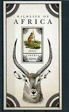 Libéria 2012 MNH la faune d'Afrique 1v s/s II Patas singes timbres animaux sauvages