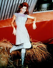 Land of the Giants Deanna Lund 8x10 photo P0719