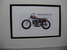 1972  Harley Davidson XR750  Motorcycle Exhibit Celebration artist Illustrated