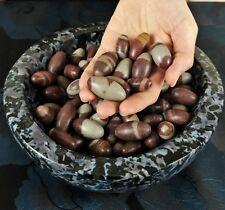 "GEMCORE: Four(4) Shiva Lingam (1"") Lingham Egg Narmada River India Crystal Stone"