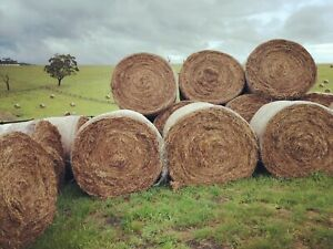 ROUND PASTURE HAY BALES CLEARANCE