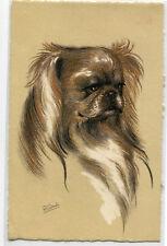 Pekinese Dog Portrait Artist Signed R F Gaulin postcard