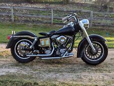1979 Harley-Davidson FLH