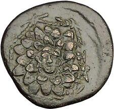 AMISOS in PONTUS MITHRADATES VI the GREAT Gorgon Aegis Nike Greek Coin i53941