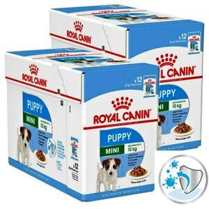 Royal Canin Wet Mini Puppy - Junior Saver Pack: 24 x 85g