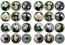 24 panda bear cute panda cubs funny cup cake topper birthdays party edible paper