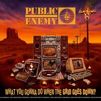 Public Enemy - What You Gonna Do When Grid Goes Down [CD] Sent Sameday*