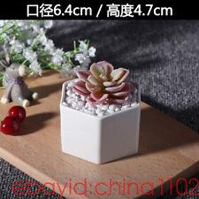 White Ceramic Mini hexagon Cart Cacti Succulent Plant Pot Flower Planter