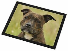 Staffordshire Bull Terrier Dog Black Rim Glass Placemat Animal Table, AD-SBT15GP