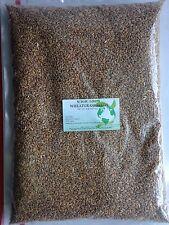 WHEATGRASS SEEDS -NON-GMO / 5 LB (Approximately 65,000 seeds)