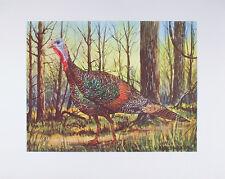 Vintage ART PRINT Wild Turkey W. HAROLD HANCOCK Wildlife 16x20 Thanksgiving MINT