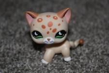 Littlest Pet Shop Leopard Kitty #852 Cream Orange Green Moon Eyes LPS Toy Cat