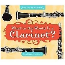 What in the World Is a Clarinet? by Mary Elizabeth Salzmann (2012, Book, Other)