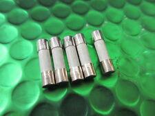Fuse Fast Acting Ceramic Cartridge 100ma 250v Miniature 5x20  **10 per sale**