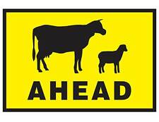 Stock Cattle Animal Crossing Ahead Boxed Edge Class 1 Reflective  T1-19A