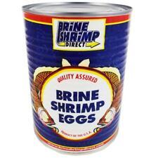 Brine Shrimp Hatching Eggs 100 Grams - 90% Hatch Rate