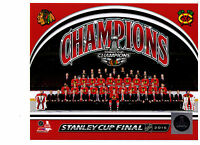 Chicago Blackhawks 2015 Stanley Cup Champions Team Sit Down 8x10 Photo NHL