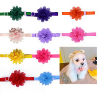 Adorable Pet Dog Cat Bowties Chiffon Flower Dog Collar Adjustable Bow Tie