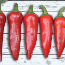 Red Fresno Hot Pepper 30 organic Seeds pepper FREE SHIPPING