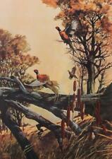 Vintage Bruce Lattig Pheasant Jumping Flying Large Lithograph Hunting #S529